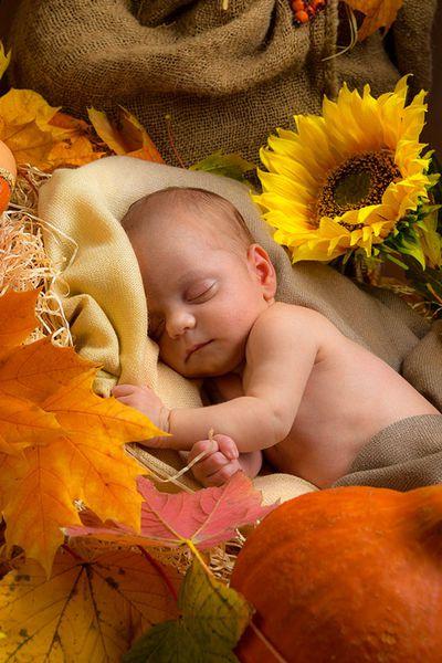 Newborn-Fotoshooting - Baby-Fotoshooting Köln, Fotos von Babies und Neugeborenen
